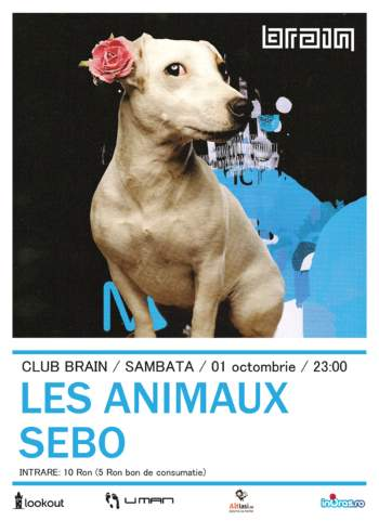 Les animaux and Sebo in Club Brain Iasi